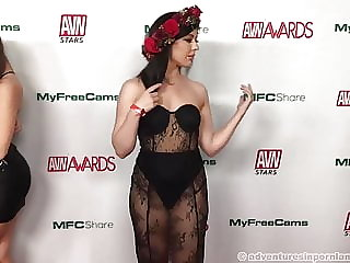 AVN Nominations Party Red Carpet - Part 2